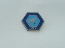 Pin's CHAMOIS IMEF - Animaux