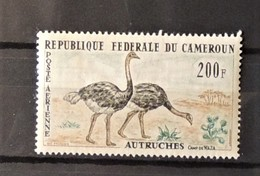 03 - 20 // Cameroun  PA N° 55 **  - MNH - TB - Autruche - Cameroun (1960-...)
