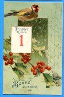 NY561, Bonne Année, 1er Janvier, Oiseau, Bird , Chardonneret élégant, Précurseur, Circulée 1904 - New Year
