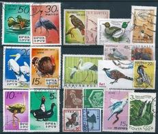 B0766 Fauna Animal Birds 1960-2001 21 Different Used - Colecciones & Series
