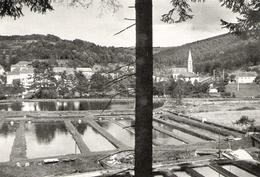 ABRESCHVILLER Pisciculture De Truites 1966 - Vieux Papiers