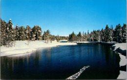 Idaho Island Park Scene On Buffalo River - Etats-Unis