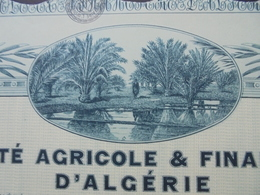 ALGERIE - LOT DE 5 TITRES - AGRICOLE ET FINANCIERE D'ALGERIE - ACTION B DE 100 FRS - PARIS 1928 - BELLE ILLUSTRATION - Unclassified
