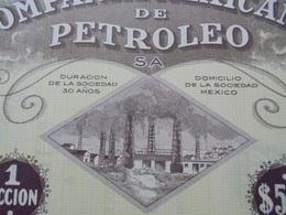 MEXIQUE - MEXICO 1929 - LOT DE 5 TITRES - CIE MEXICANA DE PETROLEO - ACION DE 500 $ - BELLE VIGNETTE - Unclassified