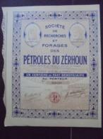 MAROC - LOT DE 5 TITRES - RECHERCHES ET FORAGES DES PETROLES DU ZERHOUN - 1/00ème  PART BENEFICIAIRE - DECO - Unclassified