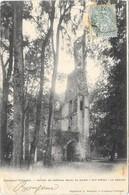 FONTENAY -TRESIGNY : RUINES DU CHATEAU - Fontenay Tresigny