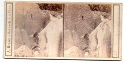 Oberland Bernois (Suisse) : Stéréophoto : Sauvetage Du Guide Jean-Michel  1863 (PPP22188) - Stereoscoop