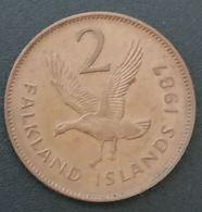 FALKLAND ISLANDS - 2 PENCE 1987 - Elizabeth II - 2eme Effigie - KM 3 - ( Îles Malouines ) - Falkland