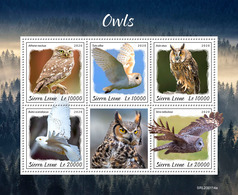 SIERRA LEONE 2020 - Owls. Official Issue [SL200114a] - Búhos, Lechuza