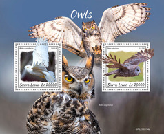 SIERRA LEONE 2020 - Owls S/S. Official Issue [SL200114b] - Búhos, Lechuza