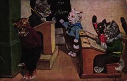 Katze, Katzenschule, Sign. Arthur Thiele, 1919 - Thiele, Arthur