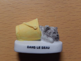 CHAT  - DANS LE SEAU - Dieren
