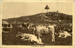 Sommet Du Suchet - VD Vaud