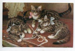 CHATS 116  Jouant Avec Ruban Et Grelots écrite En 1921 De Saint Malo - Cats