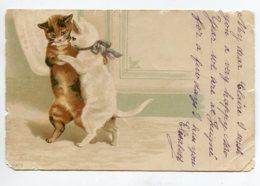 CHATS 130 Humanisés Couple De Danseurs écrite Timbrée 1902 - Cats