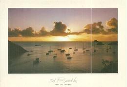 (ST BARTH )( ANTILLES FRANCAISES ) RADE DE GUSTAVIA - Cartes Postales