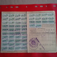ELSASS LOTHRINGEN 1911 CARTE DE RATIONNEMENT SAUSHEIM - Alsace-Lorraine
