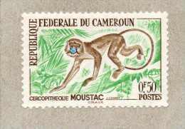 CAMEROUN : Cercopithèque(Cercopithecus) - Singe - Primate - Mammifères - - Cameroun (1960-...)