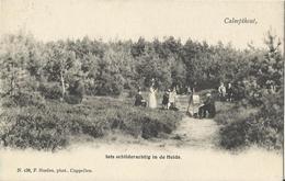 Kalmthout - Calmpthout Iets Schilderachtig In De Heide (uitg Hoelen 138) 1903 (zeldzaam) - Kalmthout