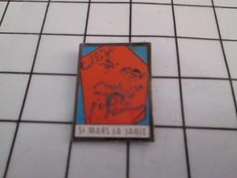 917 Pin's Pins / Beau Et Rare / THEME : ADMINISTRATIONS / COLLEGE PASTEUR ST MARS LA  JAILLE - Administrations