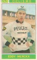 N. 249 EDDY MERCKX - Ciclismo - Figurina Sticker Campioni Dello Sport Panini 1967-68 - Panini