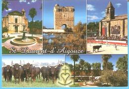 Saint-Laurent-D'Aigouze (Aigues-Mortes-Gard)-Multivues-la Tour Carbonnière-Course Camarguaise-Vachettes-vaches... - Aigues-Mortes