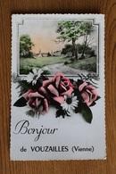 Vouzailles 86170 Carte Fantaisie De Vouzailles 072CP04 - France