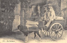 En Sologne - Le Boulanger Et Sa Voiture De Livraison - Attelage De Chien - Cecodi N'959 - Francia