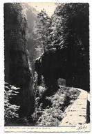 38/26 - Le VERCORS - Les Gorges De La Bourne - Photo Edition Roby N° 458 - Other Municipalities