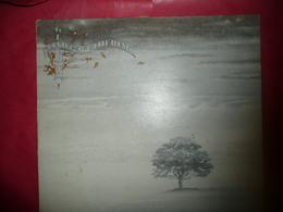LP33 N°3007 - GENESIS - WIND & WUTHERING - 9103 114 - Rock