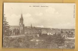 C.P.A. BACCARAT - Rue Des Ponts - Baccarat