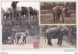 4 Cpa  Réf-JP-V-v- 176 (   Les  ELEPHANTS ) - Elephants