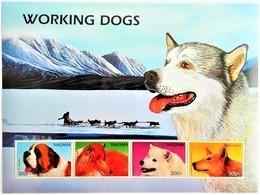 Tanzania 1996**Mi.2510-13 Working Dogs , MNH [5;7] - Dogs