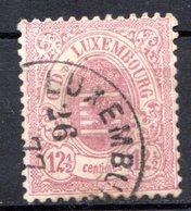 LUXEMBOURG - 1874-80 - N° 31 - 12 C. 1/2 Rose - (Armoiries) - 1882 Allégorie