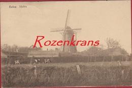 Eelen Elen Molen Windmolen De Hoop Moulin A Vent ZELDZAAM TOPKAART Dilsen Stokkem Windmill  (In Goede Staat) Limburg - Dilsen-Stokkem