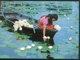 °°° 20463 - BANGLADESH - WATER LILY °°° - Bangladesh