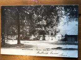Westerlo Ferme Het Hof 1905 A Malines Henriette De Schrynmaker De Dormael Zie Stempel - Westerlo