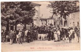 MANE - Le Marché Aux Veaux - France