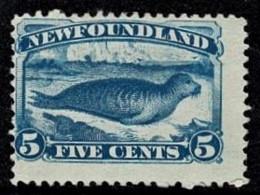 Newfoundland 1880 Common Seal On Ice-floe 5c Blue Mint No Gum  SG 59a - - Terre-Neuve