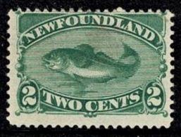 Newfoundland 1880 Cod Fish 2c Green Mint No Gum  SG 46 - Terre-Neuve