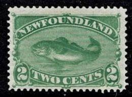 Newfoundland 1880 Cod Fish 2c Green Mint No Gum  SG 46 - - Terre-Neuve