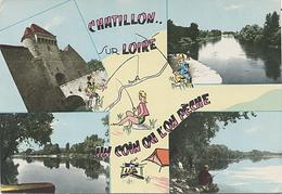 X8981 CHATILLON SUR LOIRE LOIRET UN COIN DE PECHE PECHEUR PECHE A LA LIGNE - Chatillon Sur Loire