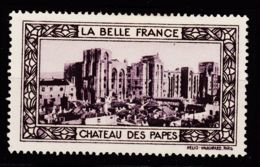 VIGN16 AVIGNON CHATEAU DES PAPES Vignette Collection LA BELLE FRANCE 1925s Helio VAUGIRARD PARIS Erinnophilie - Commemorative Labels