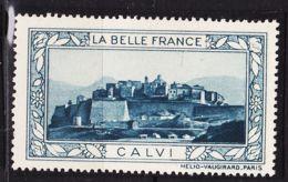 VIGN76 CALVI Vignette De Collection LA BELLE FRANCE 1925s Helio VAUGIRARD PARIS Erinnophilie - Commemorative Labels
