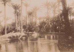 1904 Photo Figuig Algérie - Lieux