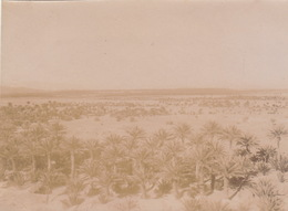 1904 Photo Figuig Du Col De Zenaga Algérie - Luoghi