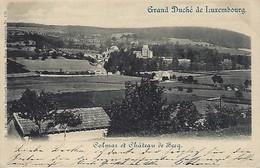 Luxembourg  - Colmar Et Le Château De Berg -1416  Charles Bernhoeft , Luxembourg  2 Scans - Entiers Postaux