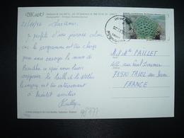 CP Pour La FRANCE TP Favia Pallida (Dana) 8 BAHT OBL. CHIANGMAI AIRPORT Et Datée 24/11/92 - Thaïlande