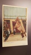 China. Peking Circus. Horse Trainer - Circus