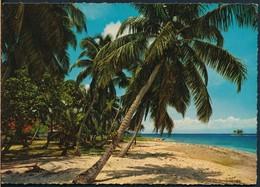 °°° 20489 - PHILIPPINES - COCONUT , COASTLINE IN LUZON °°° - Filippine